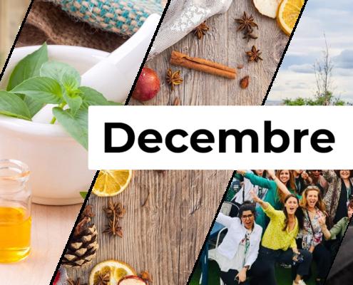 Evenement décembre Bureaux & Co Montpellier