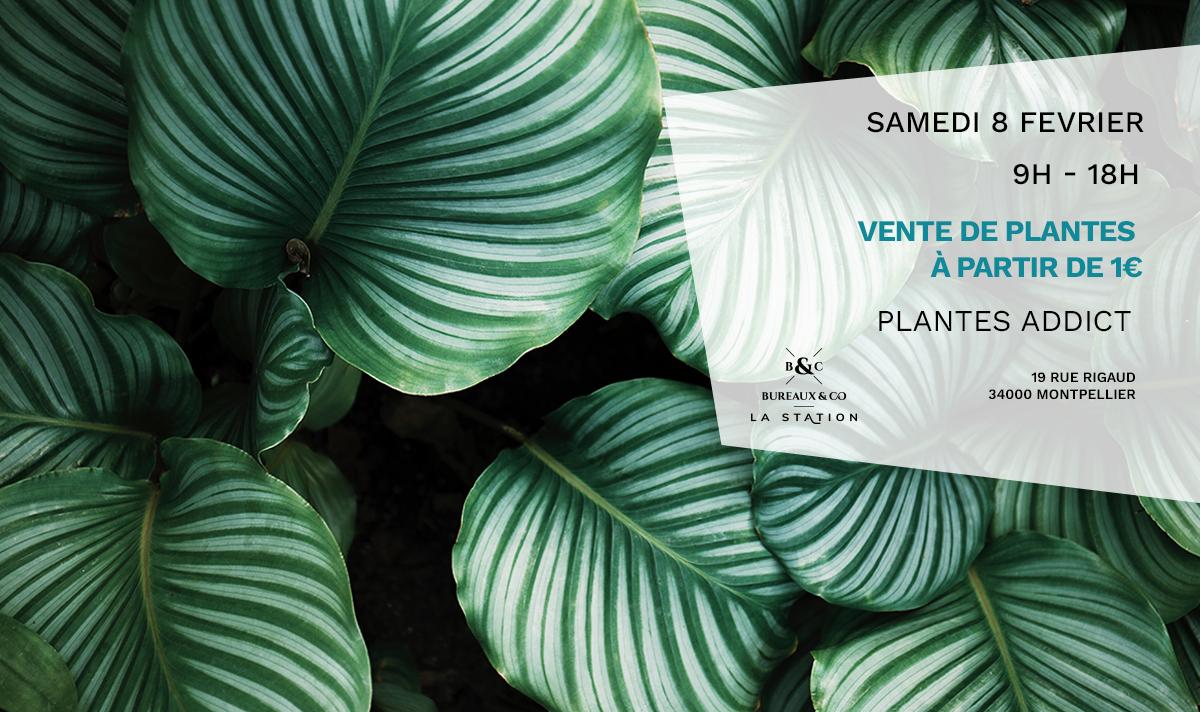 PLANTE ADDICT - 8 février - La Station
