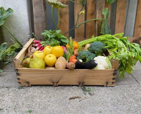 Photo-panier-légumes